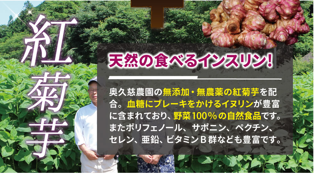 紅菊芋│天然の食べるインスリン!