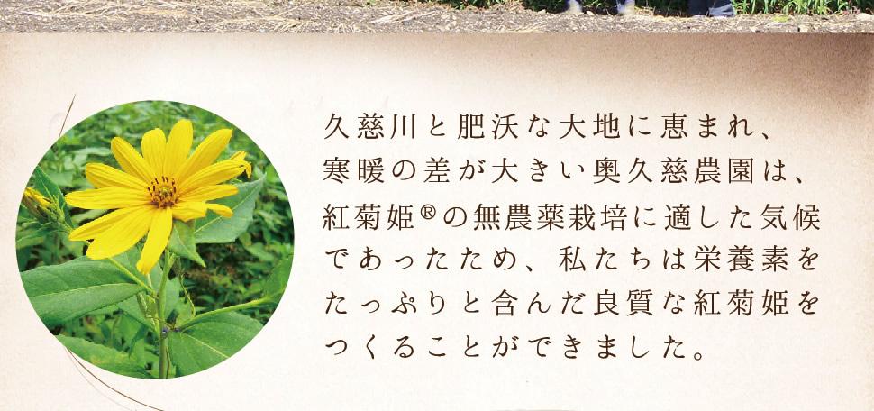 久慈川と肥沃な大地に恵まれ、寒暖の差が大きい奥久慈農園は、紅菊姫®の無農薬栽培に適した気候であったため、私たちは栄養素をたっぷりと含んだ良質な紅菊姫をつくることができました。